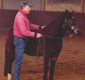 "Lolle med en ""pysslig"" häst som han tränat 14 gånger."